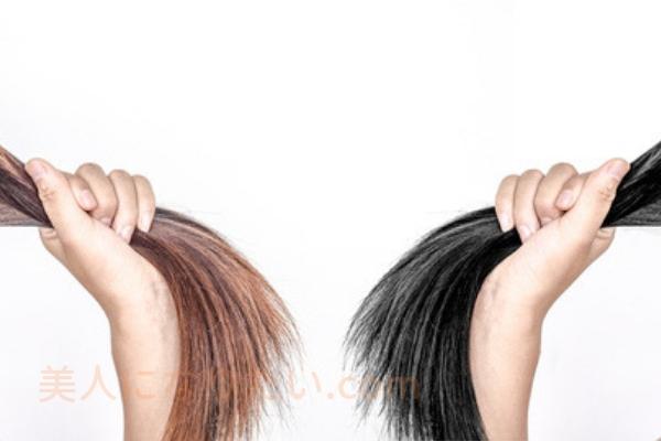 太い髪と細い髪の違い